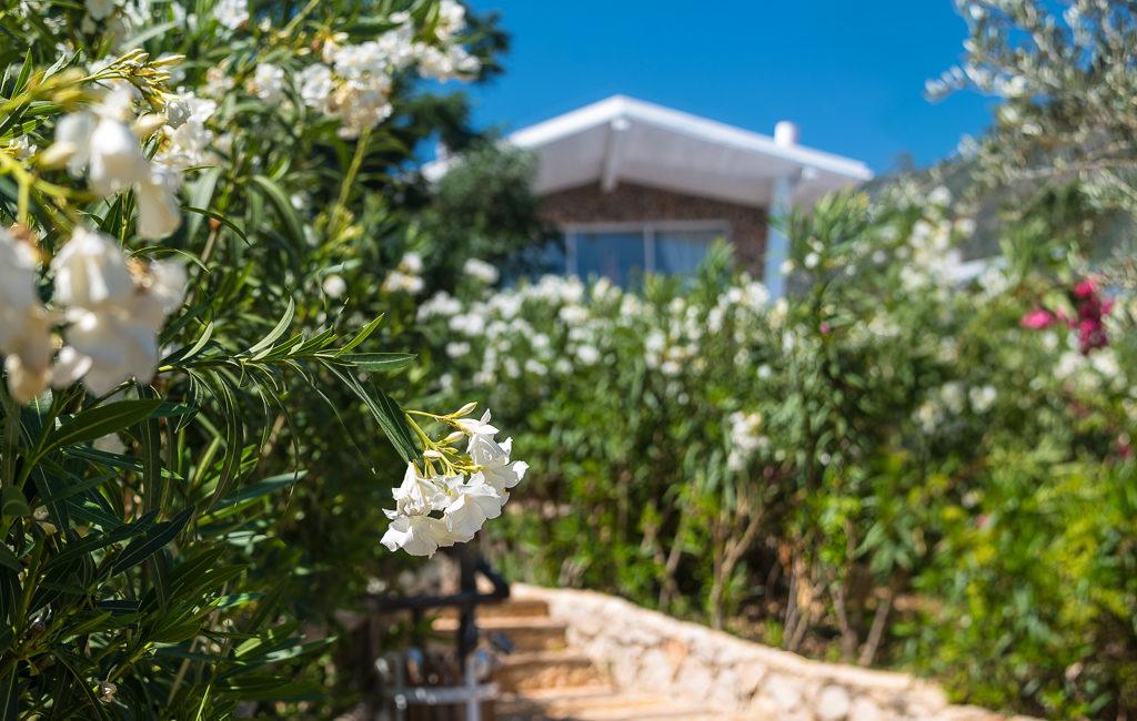 Likya Pavilion Pool House and gardens
