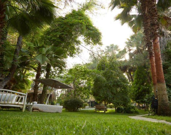 Gardens at Golden Key Bordubet
