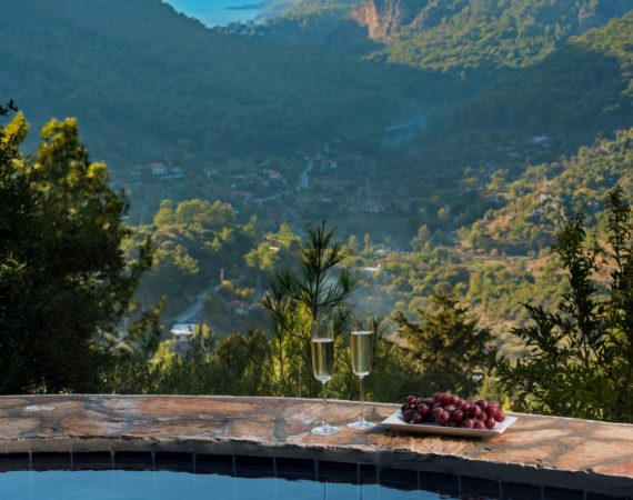 The Pool and magnificent View from Wolfs trail cottage