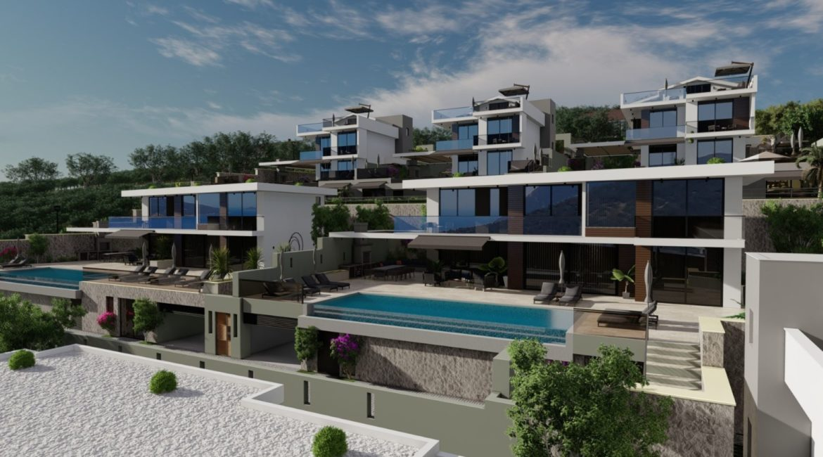 Frontal layout of villas