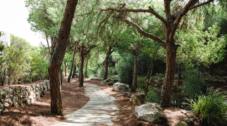 Praia Verde delightful gardens